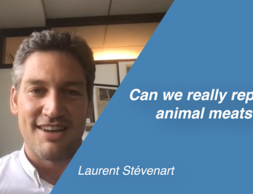 Can we really replace animal meats?