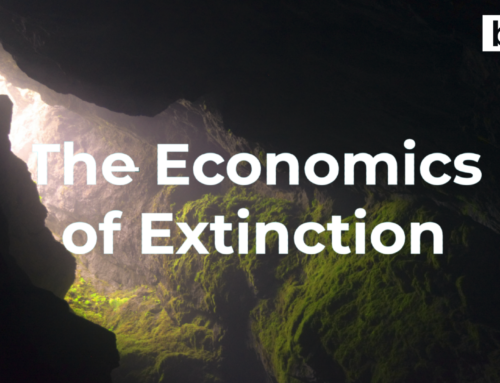 The Economics of Extinction: Bats