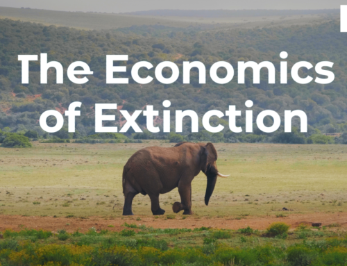 The Economics of Extinction: Elephants
