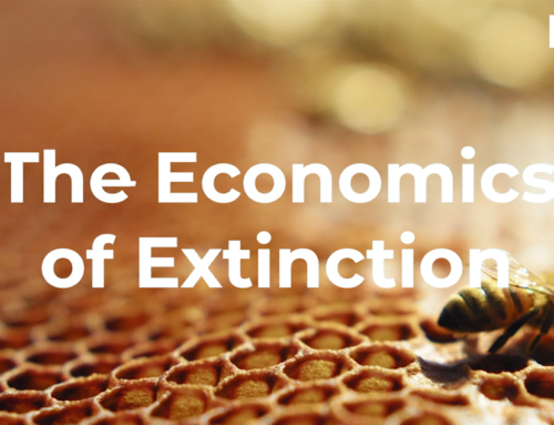 The Economics of Extinction: Bees